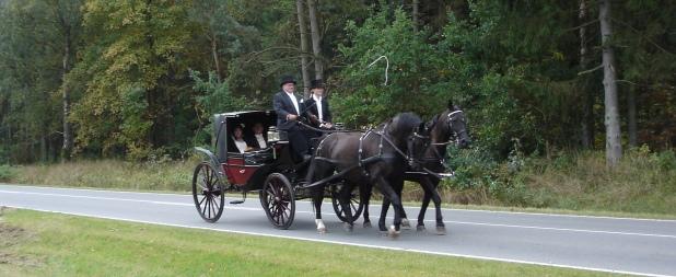 hestevogn bryllup pris